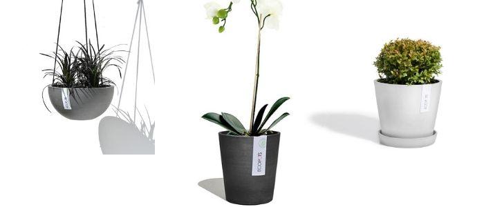 Binnenpotten ECOPOTS - Sels Evergreen