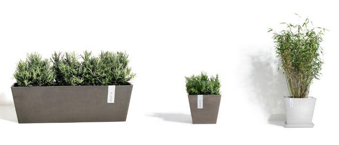 ECOPOTS buitenpotten - Sels Evergreen