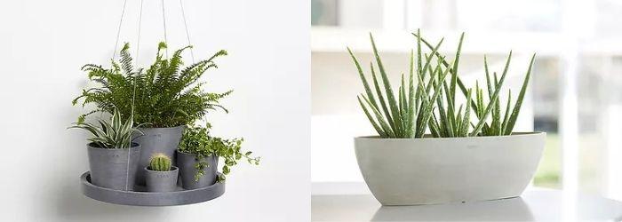 ECOpots - Sels Evergreen
